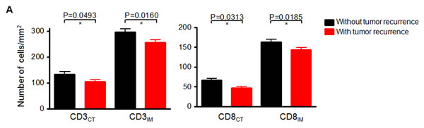 Negative correlation between the number of CD3