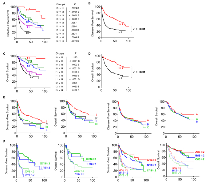 Increased survival time for the patient with high Immunoscore (IS).
