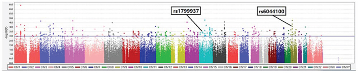 Scatter plot of P values (shown as -log10) in association test of 389,795 single nucleotide polymorphismalleles with pathologic response status at the end of anthracycline-based neoadjuvant chemotherapy in discovery cohort of 92 breast cancer patients. Colors indicate chromosomes.