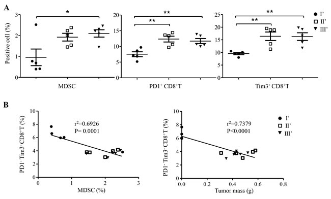 Frequency and correlation analysis of CD8