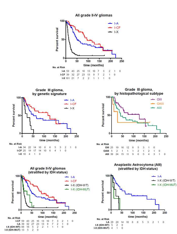 Survival of glioma patients with I-A, I-CF, and I-X genetic signatures.