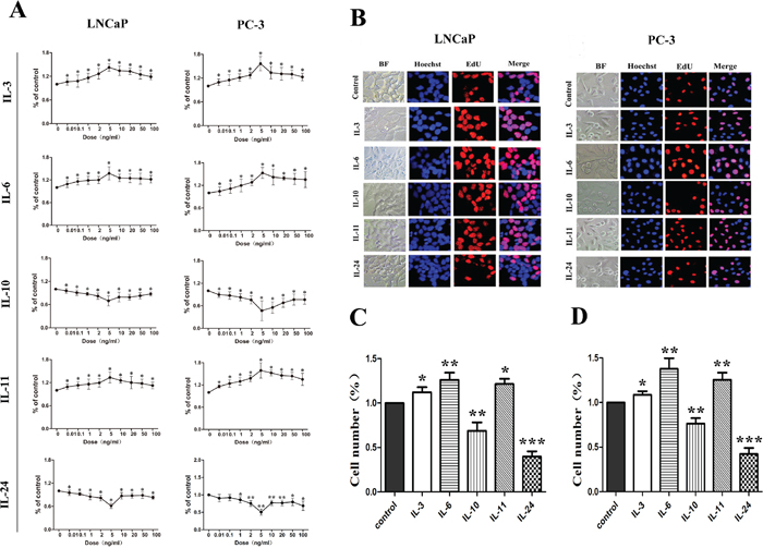 Growth influence of ILs on LNCaP and PC-3 cells.
