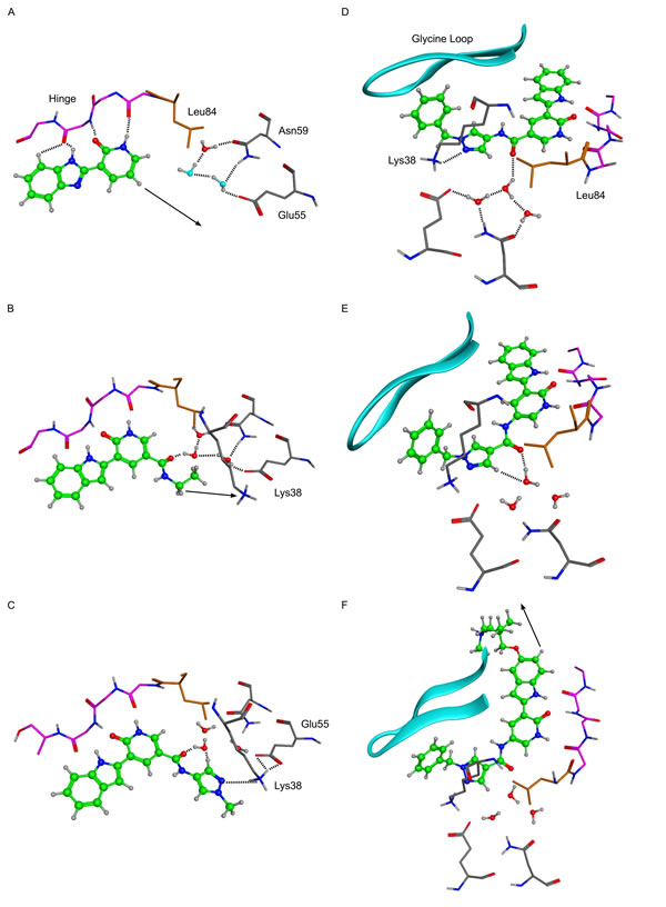 X-ray crystal structures of key molecules in evolution of VER-154637 to V158411.