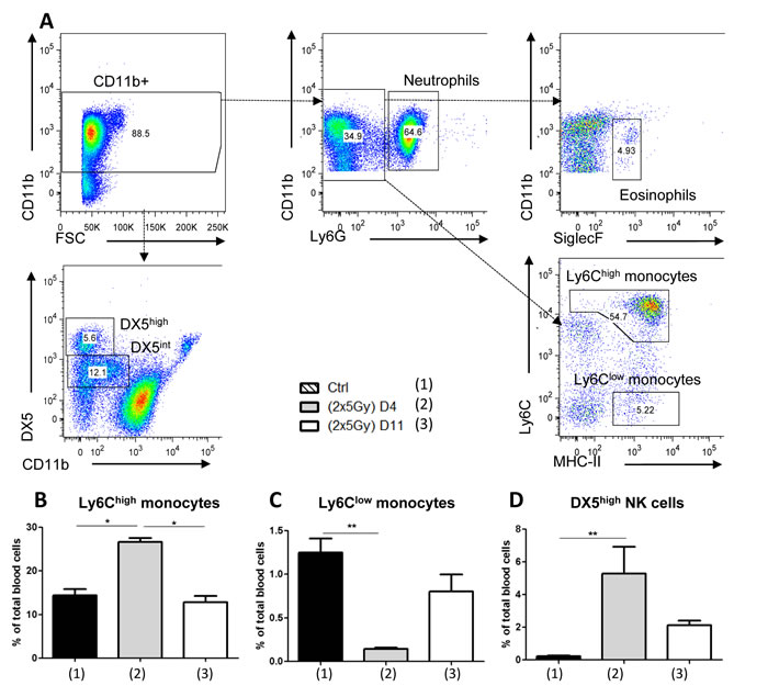 FACS analysis of total blood cells in SCID mice subjected to hypofractionated RT.