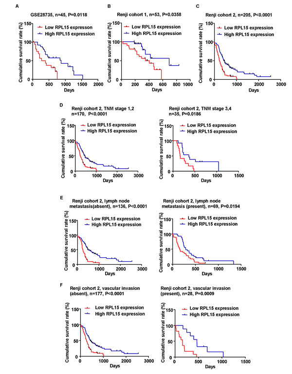 Kaplan-Meier analysis of overall survival in PDAC patients.