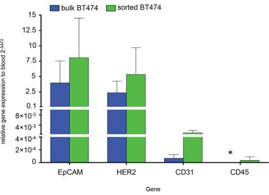qRT-PCR comparing gene expression of bulk BT474 (BT474b) (blue) and sorted BT474 (BT474s) (green) to PB.