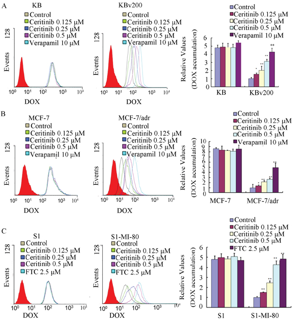 Effect of ceritinib on the intracellular accumulation of Dox in MDR cells and their parental cells.