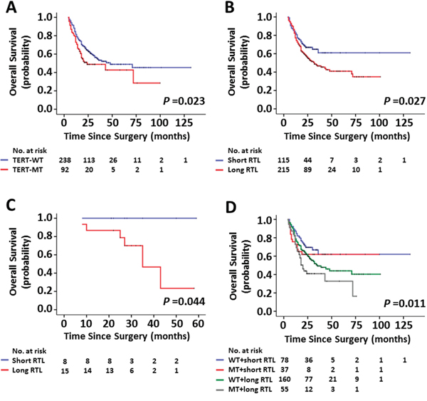 Kaplan-Meier analysis of overall survival for glioma patients assessed for the mutational status of TERT promoter and the RTL individually or in combination.