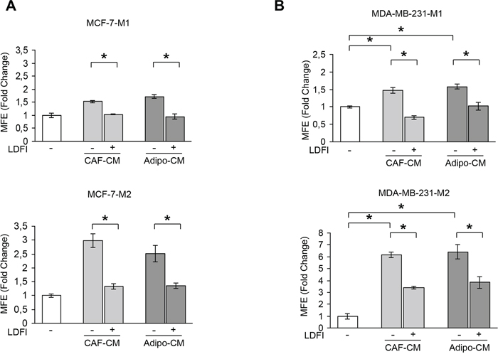 Effects of a selective leptin receptor antagonist on breast cancer stem cell activity.