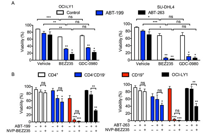 BEZ235 does not enhance the toxicity of BH3 mimetics in normal human T cells.