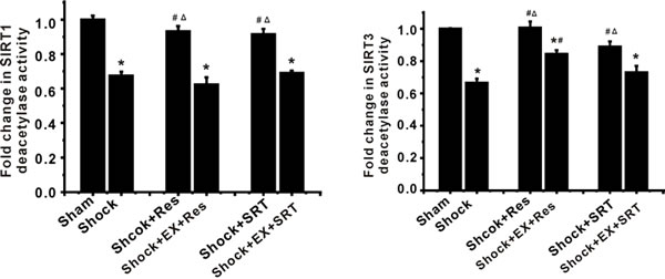 Modulation of SIRT1 activity leads to changes in SIRT3 deacetylase activity in ASMCs during severe shock.