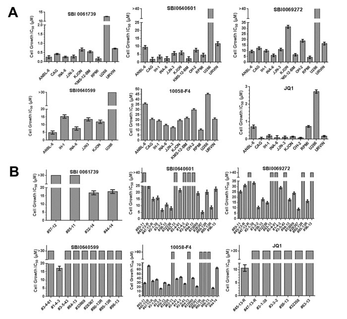 Susceptibilities of multiple myeloma cell lines and primary explants to SBI compounds.