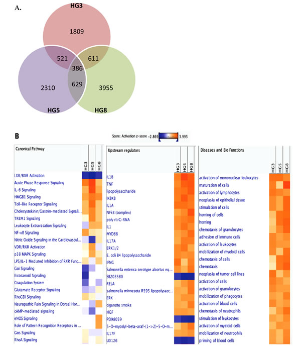 Transcriptome analysis of VZV-infected HGPS cells.