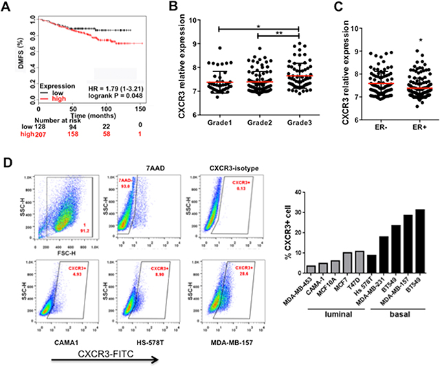 Figure 4. CXCR3 expression correlates with breast cancer progression and metastasis.