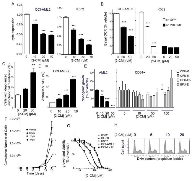 Effects of 2-C-methyladenosine on leukemia cells.