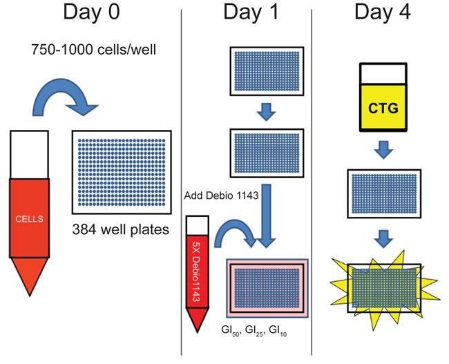 Schematic of Debio 1143 sensitization screen.