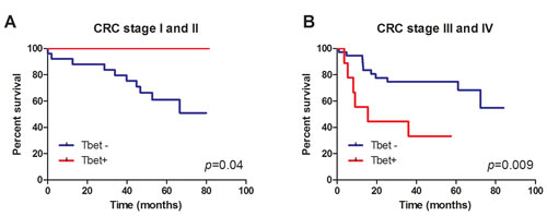 Tbet expression is associated with better survival of CRC stage I and II patients.