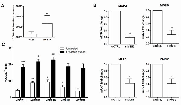 CD80 expression is influenced by MMR deficiency.