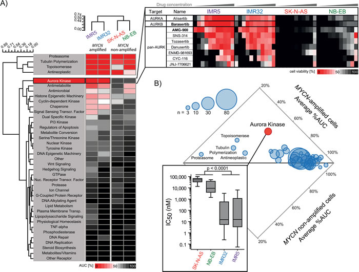 Drug screening of 465 oncology-relevant small molecules demonstrated selective activity of aurora kinases-targeting inhibitors in