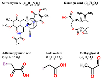 Structure of various inhibitors of GAPDH with anticancer effects in preclinical models (Reproduced with permission of RSC Worldwide Ltd from http://www.chemspider.com).