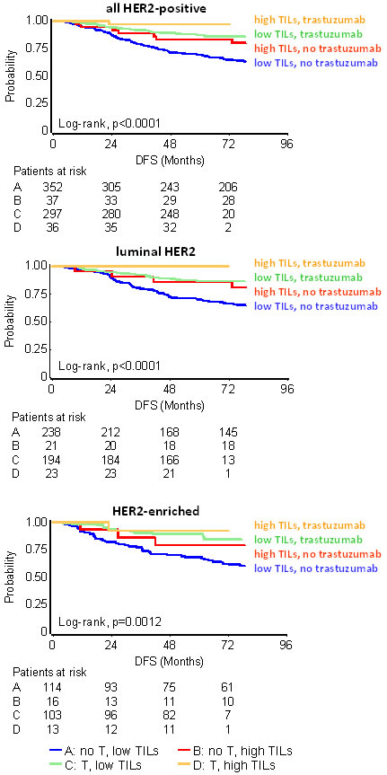 Effect of TILs with respect to trastuzumab (T) in HER2-positive patients.