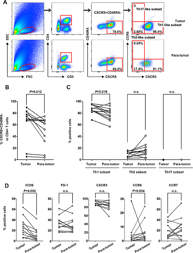 Characterization of tumor-infiltrating CXCR5+CD45RA−CD4+ T cells in tumor and para-tumor tissues.