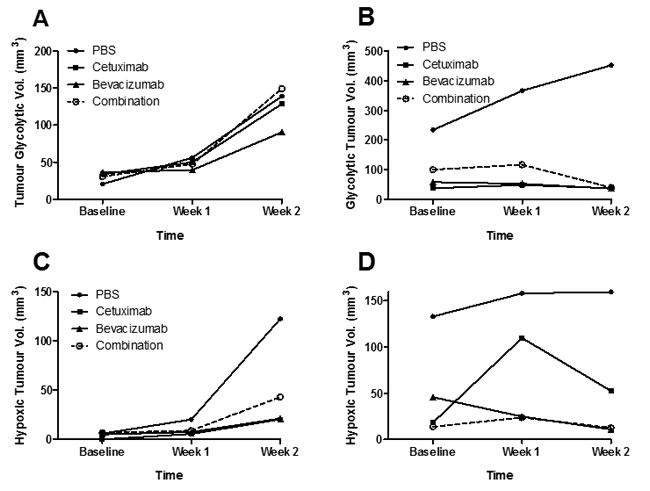 Glycolytic and hypoxic tumour volumes following treatment with cetuximab and bevacizumab.