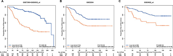 Kaplan-Meier estimates of recurrence-free survival in patients accepting surgery only according to the drug-free prognostic signature of post-operative recurrent risk.
