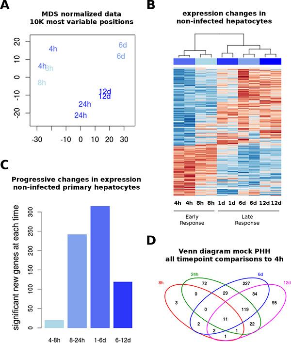 Transcriptome in non-infected PHH.