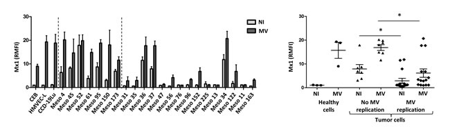 Sensitivity to MV replication correlates with the absence of expression of the antiviral protein Mx1.