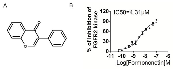 Formononetin decreases FGFR2 kinase activity.