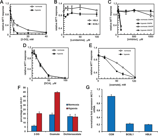PEL cells are sensitive to glycolytic inhibitors.