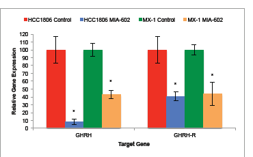 Treatment of tumors with the GHRH antagonist MIA-602 significantly suppressed the expression of GHRH and GHRH-R genes by tumors of HCC1806 and MX-1 human TNBC.