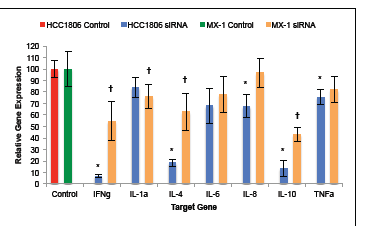 Silencing of GHRH-R expression by human TNBC cell lines with siRNA suppressed the expression of IFNγ, IL-1α, IL-4, IL-6, IL-8, IL-10, and TNFα.