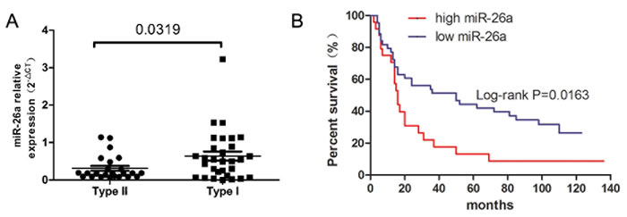 miR-26a expression and prognosis of EC patients.