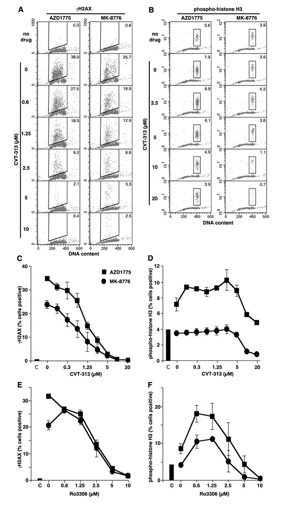Induction of γH2AX and pHH3 by MK-8776 and AZD1775, and suppression by inhibitors of CDK1 and CDK2.