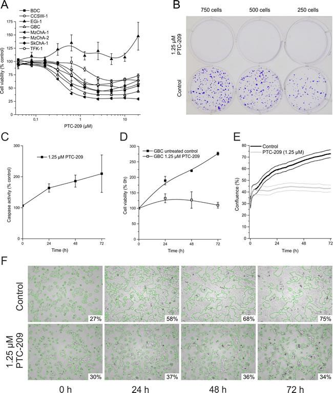 Cytotoxic effects of PTC-209 on BTC cells.