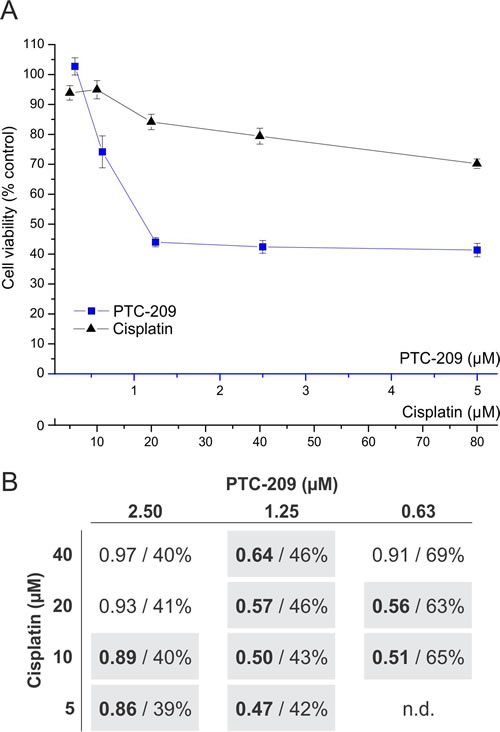 Synergistic cytotoxic effect of combined PTC-209 and cisplatin treatment.
