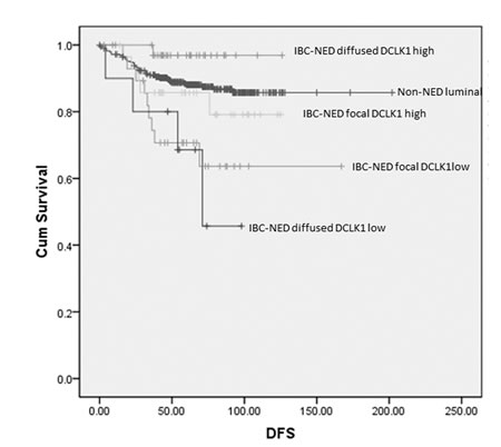 Kaplan-meier analysis on DFS of non-NED luminal and IBC-NED according to NED marker and DCKL1 expression.