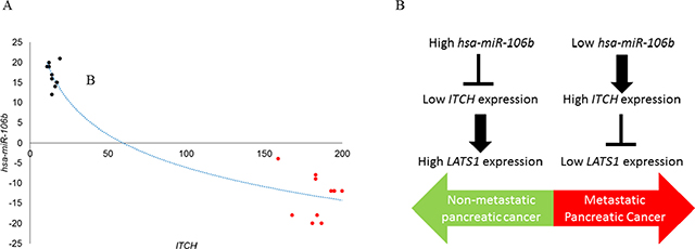 ITCH mRNA and miR-106b are inversely correlated in patients with pancreatic cancer.