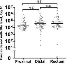 Tumour location does not significantly alter faecal miR-20a levels.