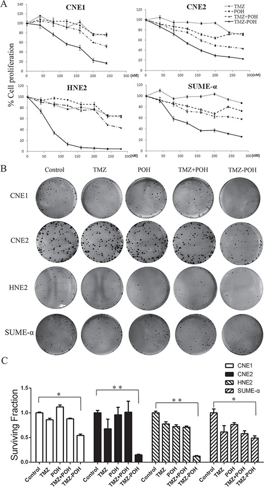 Effects of TMZ-POH on the growth of NPC cells.