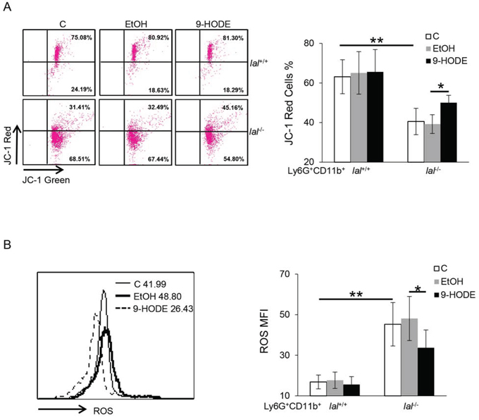 PPARγ ligand reverses the damaged mitochondrial membrane potential and suppresses ROS production in lal−/− MDSCs.