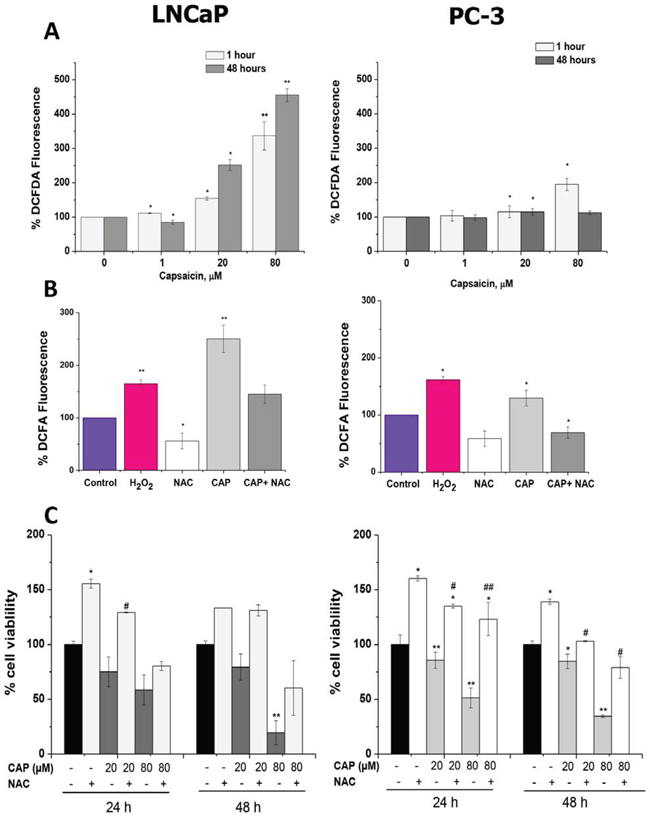 Reactive oxygen species (ROS) generation by capsaicin treatment in prostate cancer cells.