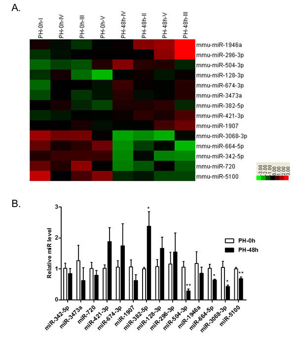 The miRNA profiles in the mouse liver at 48 hrs after PH (PH-48h) compared to those at PH-0h.