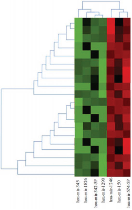 Heatmap and cluster analysis of miRNA expression in case and control group of MDS.