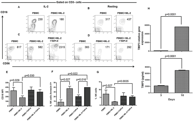 Inhibition of AML cell-induced CD16-down-regulation and NK cell depletion by TAPI 0 defines a role for TIMP3 in the resistance of LTNK cells to AML-cell-induced NKCAs.