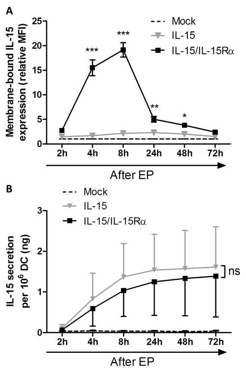 Interleukin-15 membrane expression and secretion of