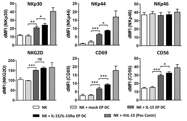 Phenotypic activation profile of DC- stimulated NK cells.