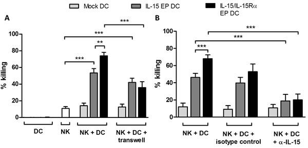 Cytotoxicity of NK/DC cocultures against Daudi cells.